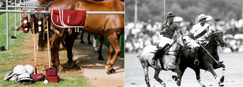 Cartier announces its 30th year of polo sponsorship